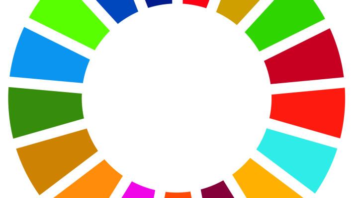 SDG Wheel_HiRes_CMYK